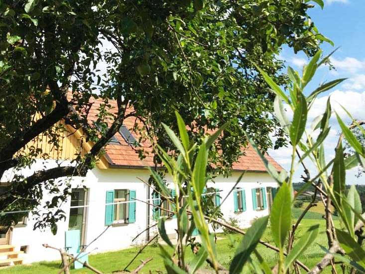 Ollers Urlaub am Bauernhof in Ollersdorf